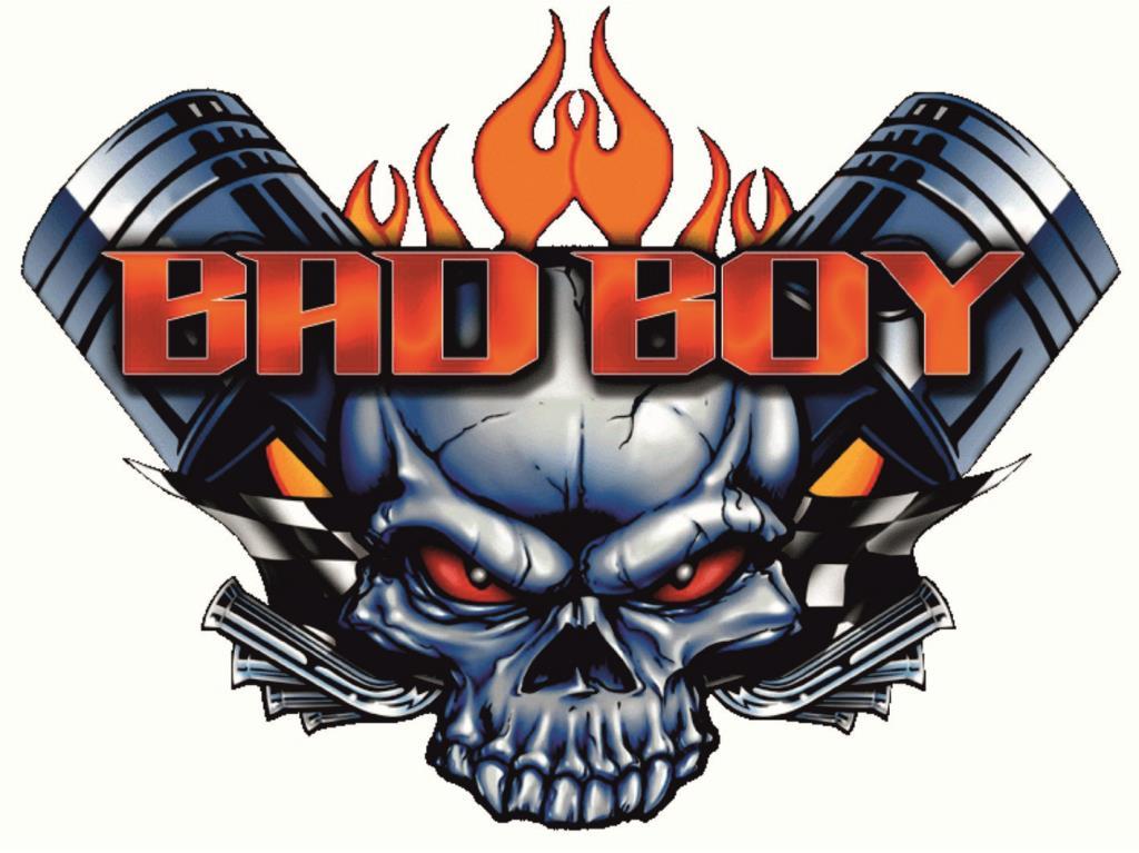 rogues bad boy - 753×564