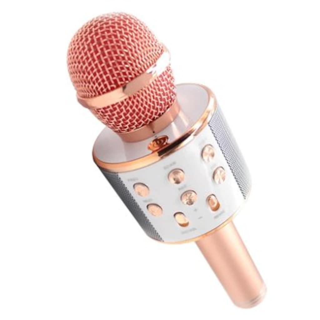 71047494 - Wiser Ws858 1 Karaoke Mikrofon BT SD Aux Kablosuz Wireless - n11pro.com