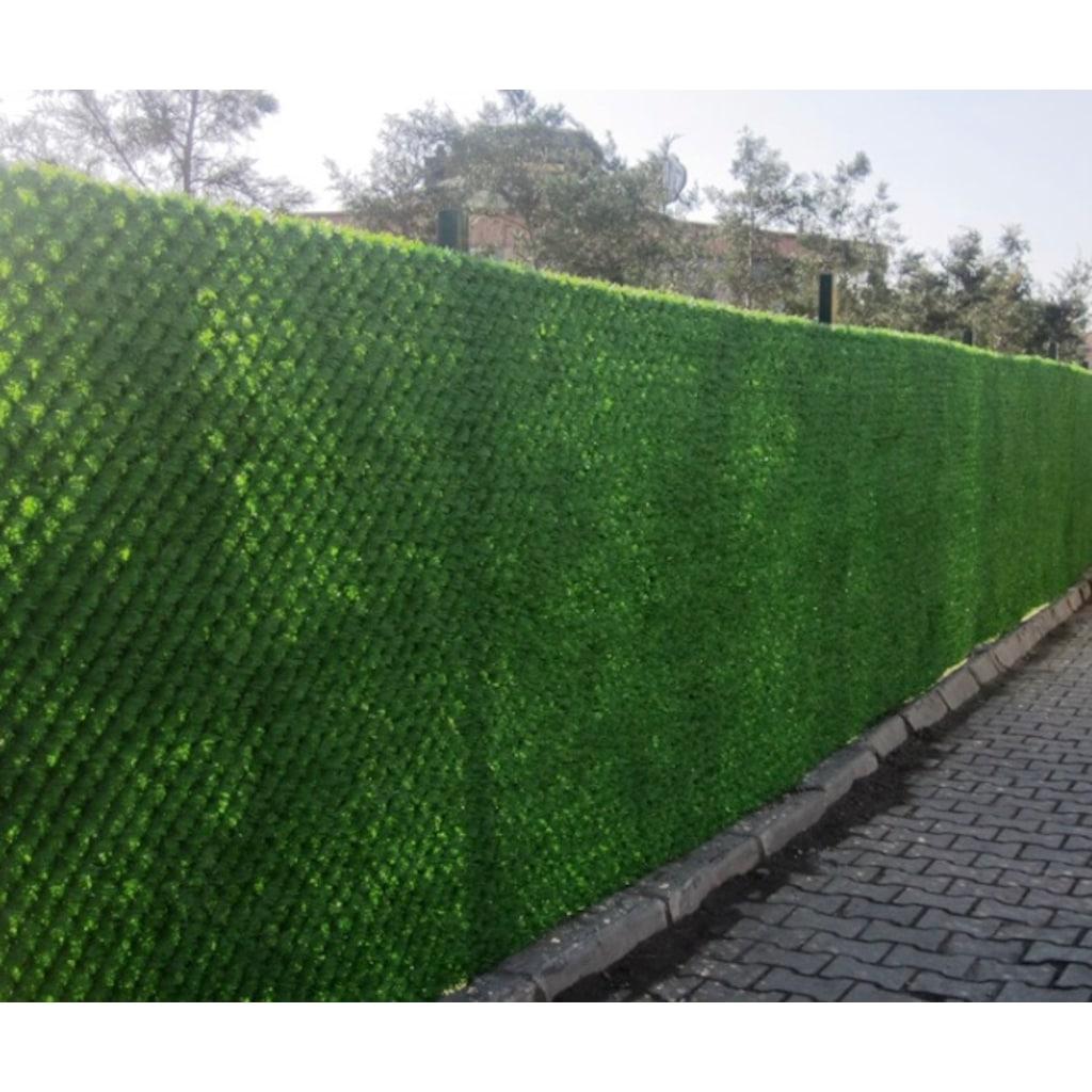 Yeşilliklerin akvaryum duvarlarında ortaya çıkmasının tüm nedenleri 28