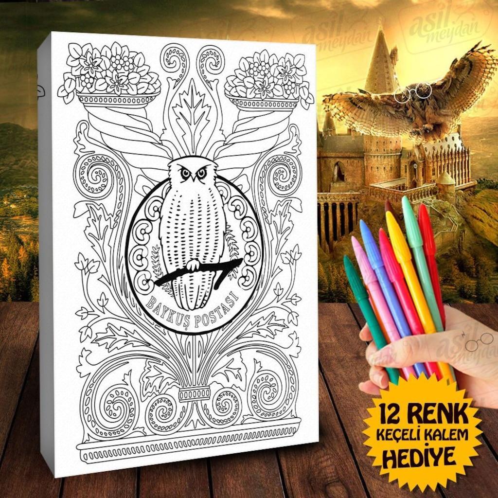 Harry Potterin Baykuşu Hedwig Baykuş Postası Boyama Tablosu 1