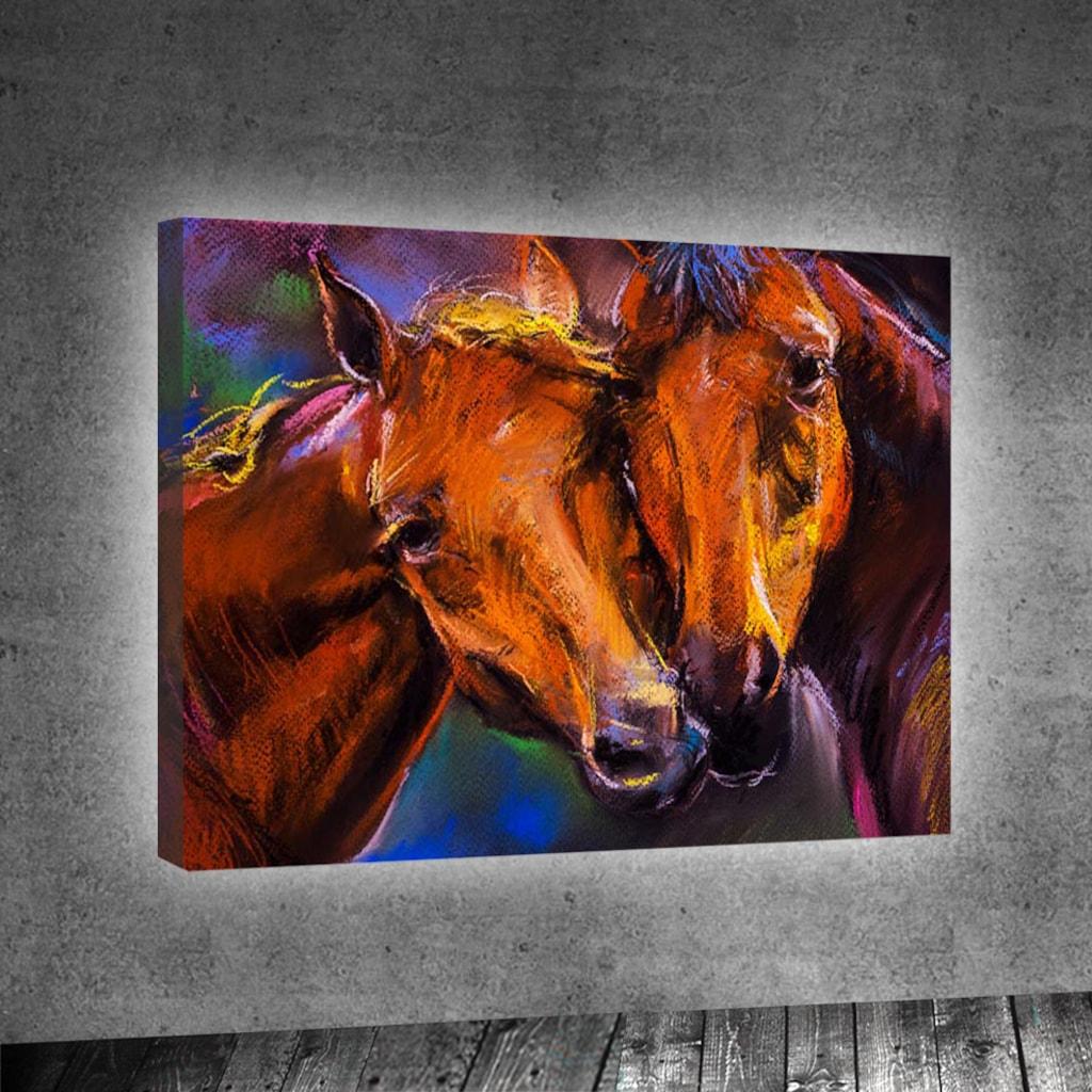 Ev atları: bakım ve bakım