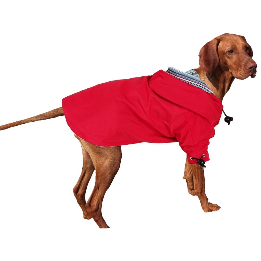 Canlı ve Dinamik Köpek Yağmurluğu Modelleri