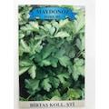 01780116 - Birtaş Maydonoz Tohumu - n11pro.com