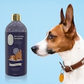 02351285 - Gallipoli Lavender Lavanta Yağlı Pet Şampuanı 400 ML - n11pro.com