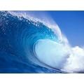 88914625 - Gülçiçek Okyanus Esansı Fresh - n11pro.com