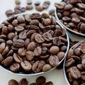 37742913 - Özbeyoğlu Kuruyemiş Kavrulmuş Kahve Çekirdeği 5 KG - n11pro.com