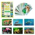 Diy Toy, Zeka Kartları, Eğitici Kartlar, 4 lü Set, Hafıza Kartlar