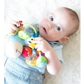 Playgro Toy Box Çıngıraklı Zebra Diş Kaşıyıcı Oyuncak