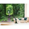 Ağaçlardan oluşan Tünel Manzarası 3D Duvar Kağıdı