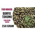 Bamya Tohumu - 250 Gram - Yerli Yeni Mahsül İlaçsız Yenilebilir