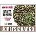 Bamya Tohumu - 500 Gram - Yerli Yeni Mahsül İlaçsız Yenilebilir