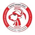 Vege Bufalo Koli Bandı 45x100 Şeffaf 48Li