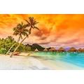 Gün Batımında Tropikal Sahil Manzarası Duvar Kağıdı