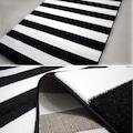 Payidar Roya FB45 Siyah Beyaz Modern Halı 150x233 cm