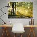 Kanvas Tablo- Orman Gün Işığı Tablosu