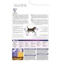 Proplan Orginal Kitten Yavru Kedi Maması 3 kg (junior)