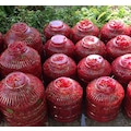 Gilaburu Meyvesi 10 Let- 5,50 kg Net Meyve