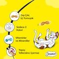 Dreamies Somon Balıklı Kedi Ödül Maması 60 Gr. X 6 Adet