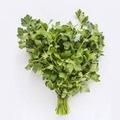 Mutlu Sebzeler Maydanoz (2 Bağ)
