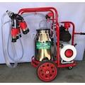 Uludağ Çift Sağım Kuru Pompa İnek Süt Sağma Makinası Krom Güğüm 4