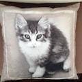 Sevimli Kedili Yastık