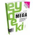 Eyvah! Dedirtmeyen Kitap:Mega - Problemler ve Sayısal Mantık