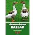 Dünyada ve Türkiye'de Kazlar