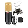 Lastvoice BM800 Condenser Stüdyo Mikrofon Set (7.1 Ses Kartı Hedi