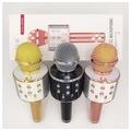 WS-858 Sihirli Karaoke Mikrofon Bluetooth  AUX SD KART GİRİŞLİ
