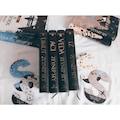 Solucan Serisi (4 Kitap Ciltli) - Zeynep Sey