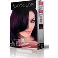 Sea Color Saç Boyası 3/66 Patlıcan Moru