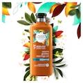 Herbal Essences Şampuan Altın Moringa Yağı 400 ml