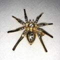 Örümcek Broş