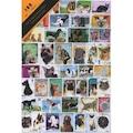 PULKO 100 Çeşit Kedi - Köpek Temalı Pul Koleksiyonu