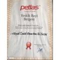 Petlas 185/65 R15 88T Elegant PT311 Yaz Lastiği 2020 Üretim