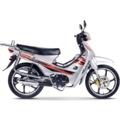 Falcon Magic 50 cc B Ehliyeti İle Kullanılabilir Motosiklet