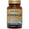 Aksu Vital Köpek Balığı Kıkırdağı 60 Kapsül ( ÇANTA HEDİYELİ )