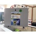 Güneş Enerjili Aydınlatma-TV-Şarj Paketi
