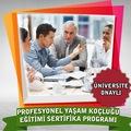 Profesyonel Yaşam Koçluğu Eğitimi Sertifika Kursu