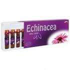 Sepe Natural Echinacea 750 mg Likid 10 x 10 ml. Ekinezya Likit