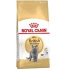 Royal Canin British Shorthair Yetişkin Kuru Kedi Maması 2 Kg