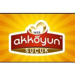 Akkoyun1453