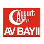 Ayyurtavbayi