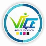ViceBaskiMerkezi
