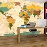 Güncel Siyasi Dünya Haritası Özel Tasarım Duvar Kağıdı