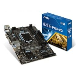 B250M PRO-VD MSI