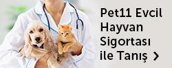 pet11 Evcil Hayvan Sigortası