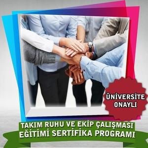 Takım Ruhu ve Ekip Çalışması Eğitimi Sertifika Programı