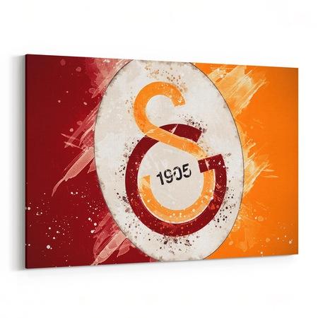 Galatasaray Logosu Desenli Tablosu N11 Com