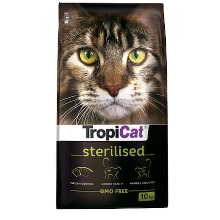 Kedi Maması İle Sağlıklı Kediler